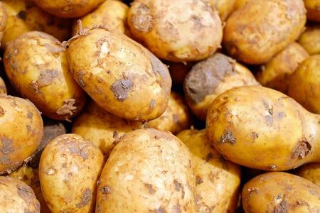 Spud lovers rejoice as popular jacket potato store returns