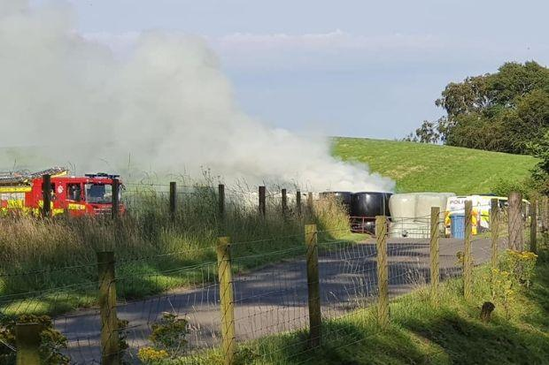 Images posted on social media by Alpha Taxis show the hay on fire