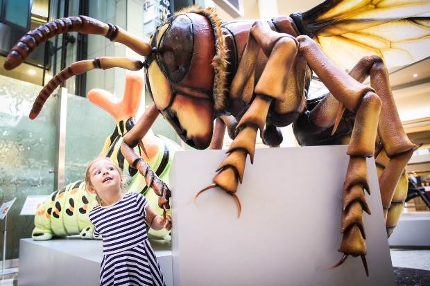 Giant British bugs take over Braehead to reconnect Scots with nature